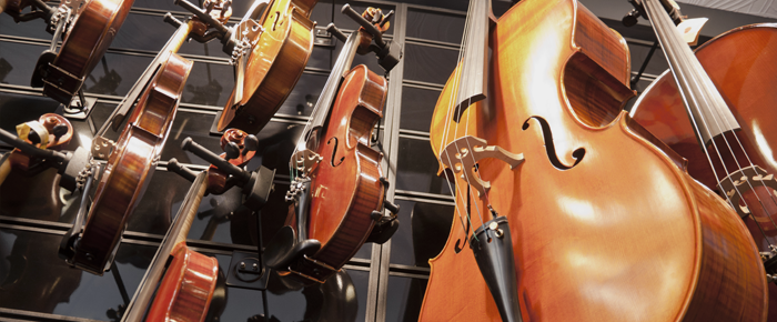 A Short Guide to Successful String Instrument Rentals